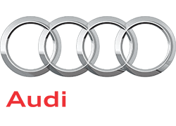 Audi Hire Badge