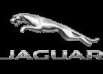 Jaguar Hire Badge